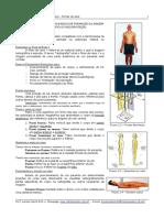 Incidências Especiais.pdf