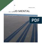 Revista de Salud Mental Meditatio