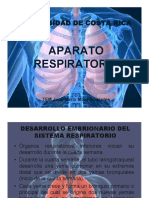 Anato AR2.pdf