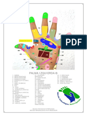 Mapa Reflexologia Podal Pdf.Mapas Manos Reflexologia Pdf