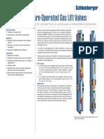 injectionpresopgas.pdf