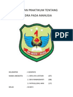 laporan biologi indra.docx