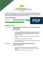 Formato CV .