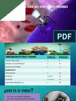 Biologia Virus y Prones