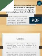 trabajo-electivo (1) (1)