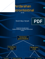 P 3b Perdarahan Gastrointestinal