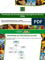 EEB Ministerio Publico II