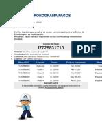 CRONOGRAMA PAGOS.docx