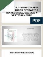 Desarrollo Arcos Dentales