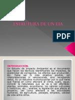 Estructura de Un EIA
