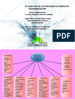 Act18-Mapa Conceptual de Las Caracteristicas de Reorganizacion
