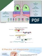 Oxygenation and Cardiac.pptx