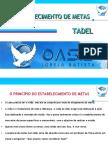 TADEL - O ESTABELECIMENTO DE METAS.ppt