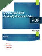 Normal Eyes With Gradually Decrease Vision