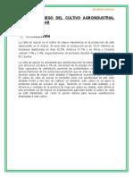 Siembra y Riego Del Cultivo Agroindustrial Caña de Azucar