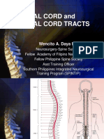 SpinalCord lecture.ppt