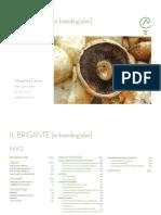 Il Brigante - Rebranding Plan - Indice [ITA]