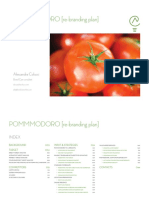 Pommmodoro - Rebranding Plan - Index [ENG]