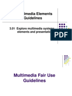 3.01C Multimedia Elements and Guidelines