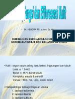 Anatomi dan Fisiologi Kulit (KULIT).ppt