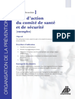 Plan_action_CSS_exemples.pdf