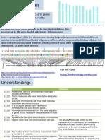 Ib Biology Chromosomes 3.2