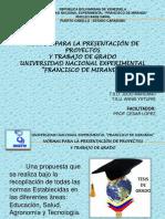 Normas de Presentacion Cesar Lopez
