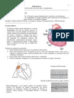 Fisiologia 4