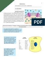 Fisiologia 2.pdf