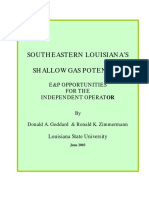 Shallow Gas Report Gom