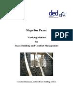 Brinkmann Manual Steps for Peace