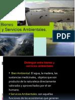 bienesyserviciosambientales-121202191041-phpapp01.pptx