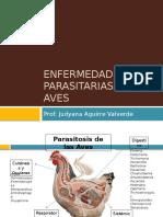 enfermedades-parasitarias-de-las-aves.pptx