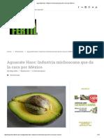 Aguacate Hass_ Industria Michoacana Que Da La Cara Por México