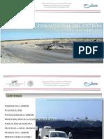 Prospectiva Mundial Del Carbon y El Caso Mexicano VP