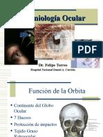 SEMIOLOGIA OCULAR 2006.ppt