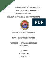 73133288 Informe Pericial Laboral