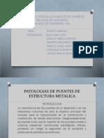 Diapo Puente Carrizal (4)