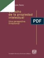 Derecho de la Propiedad Intelectual.pdf