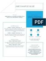 Resume Sample Blue