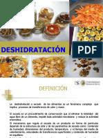 99535032-SECADO-DESHIDRATACION.pdf