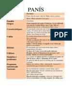 PANÍS. FITXA TÈCNICA