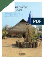 Rukas Mapuche en La Ciudad