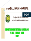rps138_slide_persalinan_normal.pdf
