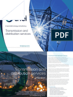 TNEI Transmission and Distribution Services Brochure B2