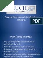 Cadenas Musculares de los Miembros Inferiores.pptx