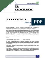 Manual de Excel Intermedio 2007_2010