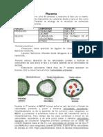 Placenta, embriología, UBA, cat 1