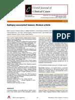 WJCC-2-623.pdf