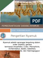 PSN DBD.pptx